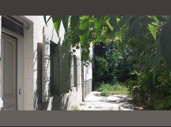 Appartager FR - Colocation idéal étudiant, stagiaire et jeune salarié, Avignon - 361 € /Mois