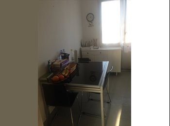 Appartager FR - Chambre disponible , Saint-Jean-le-Blanc - 300 € /Mois