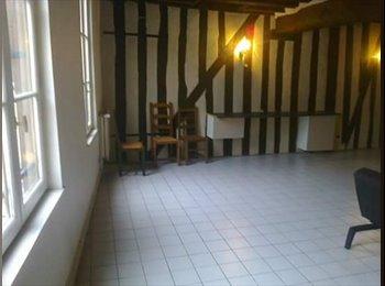 Appartager FR - Recherche colocataire , Orléans - 290 € /Mois