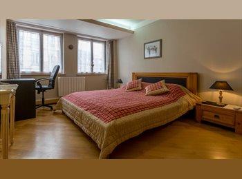 Appartager FR - Appartement en plein centre de colmar, Colmar - 400 € /Mois