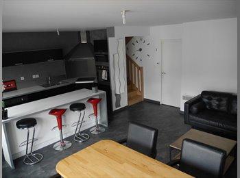 Appartager FR - Coloc 3 chambres, 96M2, Résidence sécurisée, Ronchin - 400 € /Mois