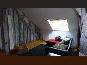 Appartager FR - Colocation dans maison de Charme Saint Jean le ), Saint-Jean-le-Blanc - 550 € /Mois