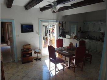 Appartager FR -  coloc dans maison aux aubes, Castelnau-le-Lez - 450 € /Mois
