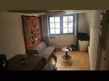 Appartager FR - Chambre spacieuse dans duplex en plein centre, Toulouse - 416 € /Mois