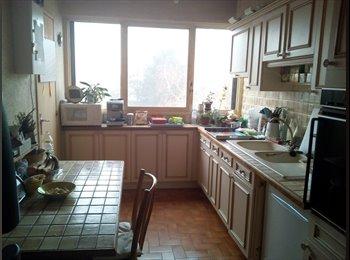 Appartager FR - Chambre 12m2 dans appartement 80m2 à Cergy-Pontoise, Pontoise - 450 € /Mois