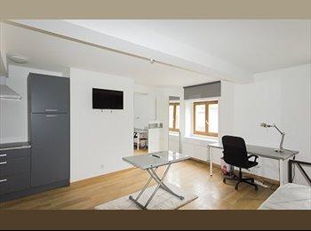 Appartager FR - Grand studio meublé - Nancy Hyper Centre, Nancy - 490 € /Mois