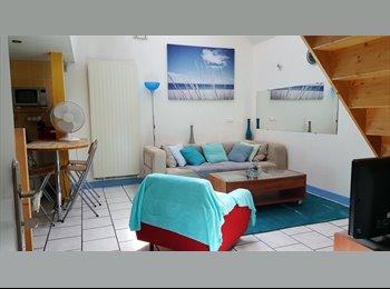 Appartager FR - Loft 65 m² en duplex, Troyes - 220 € /Mois