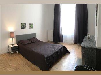 Appartager FR - Hyper Centre Appartement T4 Très haut de gamme , Saint-Etienne - 450 € /Mois