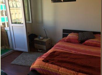 Appartager FR - Recherche colocataire grand appartement hypercentre, Toulouse - 487 € /Mois