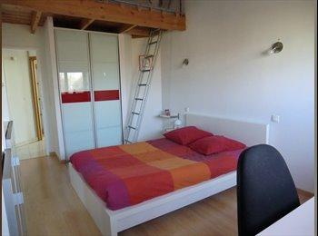 Appartager FR - chambre dans ma maison confortable contemporaine, Saint-Jory - 380 € /Mois
