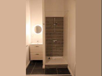 Appartager FR - Colocation d'un loft design proche des quais , Cenon - 470 € /Mois