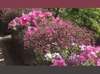 Appartager FR - À partager en toute convivialité , Le Plessis-Robinson - 500 € /Mois