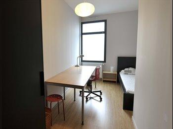 Appartager FR - Villeurbanne 2 chambres meublées libres dans loft, Bron - 420 € /Mois