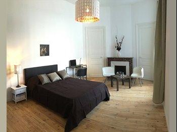 Appartager FR - Chambre dans appartement Haut de Gamme de 110m2, Saint-Etienne - 400 € /Mois