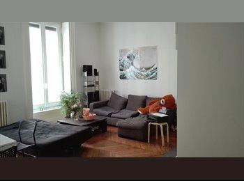 Appartager FR - Sous-location juillet et août (Lyon Bellecour), Lyon - 460 € /Mois