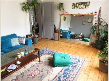 Appartager FR - chambre dans joli appart' à Schiltigheim, Schiltigheim - 350 € /Mois