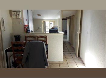 Appartager FR - Appartement plein centre , recherche colocataire, Poitiers - 250 € /Mois