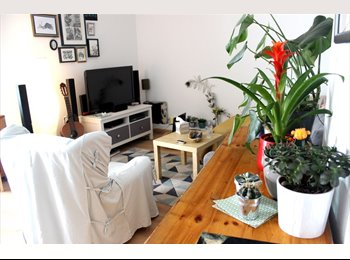 Appartager FR - Belle chambre en coloc Neudorf, Strasbourg - 427 € /Mois
