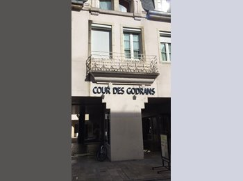 Appartager FR - Colocation hyper-centre (Cours des Godrans) , Dijon - 400 € /Mois