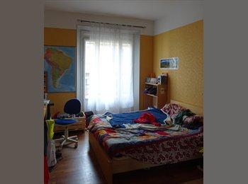 Appartager FR - Chambre dispo 1er juin centre ville, Grenoble - 360 € /Mois