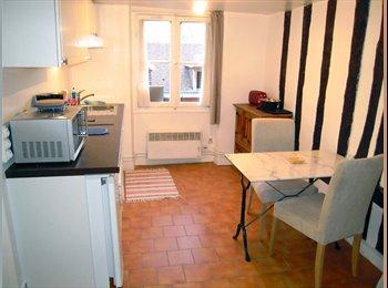 Appartager FR - Studio équipé pour 2 personnes, 4ème Arrondissement - 930 € /Mois