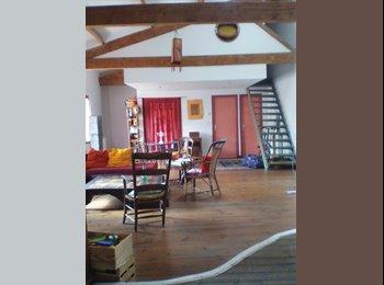 Appartager FR - Chambre disponible mai-juin 2017, Avignon - 300 € /Mois