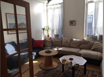 Appartager FR - Chambre disponible dans une belle colocation à Cormontaigne, Lille - 450 € /Mois