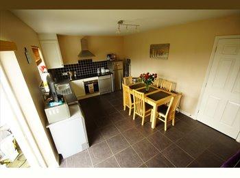 EasyRoommate IE - Single room for rent., Cork - €350 pcm