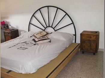 EasyStanza IT - affitto appartamento a studenti, Rimini - € 550 al mese
