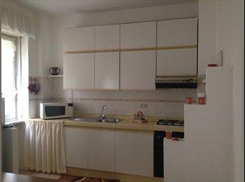 EasyStanza IT - POSTO LETTO IN IMMENSA STANZA DOPPIA IN CENTRO A PAVIA, Pavia - € 250 al mese
