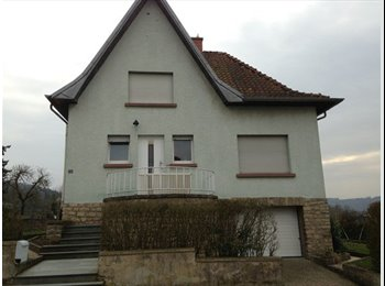 Appartager LU - Room 10 minutes from City center, Luxembourg - 580 € / Mois