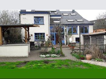Appartager LU - Chambres chez l'habitant à la campagne au centre du pays, Mersch - 650 € / Mois