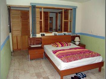 CompartoDepa MX - Comparto Depa  / Forniture room / WG (Puebla), Puebla - MX$4,000 por mes