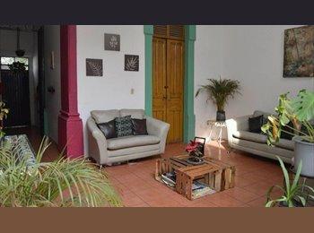 CompartoDepa MX - Buscamos roomies buena onda, Guadalajara - MX$2,400 por mes
