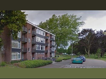 EasyKamer NL - Te huur kamer Deventer met balkon €260,- All-in., Deventer - € 265 p.m.
