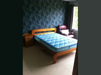 NZ - large double room, Palmerston North - $140 pw