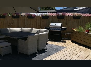 NZ - DOUBLE BEDROOM AVAILABLE IN QUIET AREA WITH EASY-GOING MATURE PROFESSIONAL FEMALE, Tauranga - $250 pw