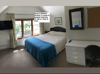 NZ -  ROOMS AVAILABLE. YOU WONT BE DISAPPOINTED!, Christchurch - $200 pw