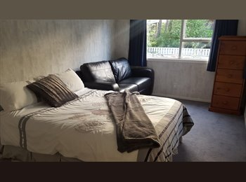 NZ - Furnished room, Hamilton - $175 pw