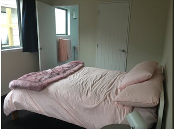 NZ - COMFY COZY BRAND NEW ROOM, Dunedin - $180 pw