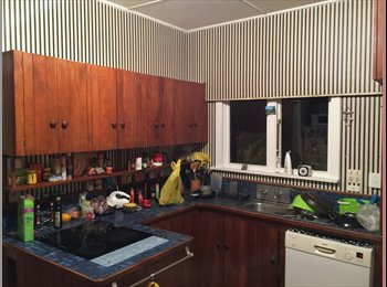 NZ - Room to let in spacious house in Hataitai, Wellington - $230 pw