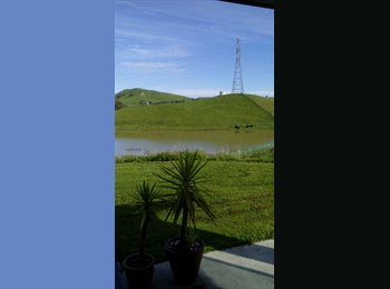 NZ - WORKING BOARDER WANTED FOR MODERN CLOSE TO TOWN HOME WITH COUNTRY VIEWS., Napier - $155 pw