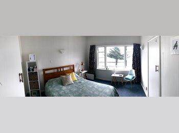 NZ - Art deco bedroom on the beach, Wellington - $325 pw
