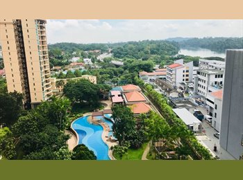 EasyRoommate SG - Room for rent at a luxurious condo, Caldecott - $1,300 pm