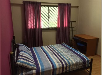 EasyRoommate SG -  Common Room Available @ Petir Road (No Agent Fee), Bukit Panjang - $650 pm
