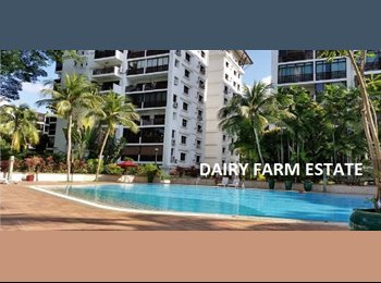 EasyRoommate SG - DAIRY FARM ESTATE FOR RENT (only 3 mins walk to Hillview MRT station), Hillview - $1,000 pm