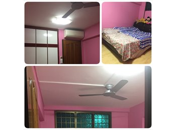 EasyRoommate SG - Common Bed Room for rent - 3 Mins to Khatib MRT, Khatib - $750 pm