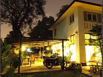 EasyRoommate SG - Gorgeous Colonial House in Seletar looking for Housemates!, Seletar - $1,600 pm
