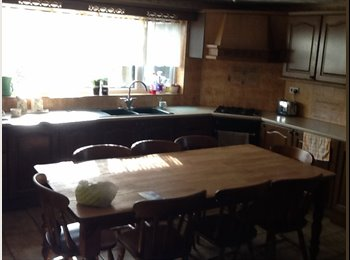 EasyRoommate UK - This is my lovely home not just somewhere to lodge, West Knighton - £430 pcm