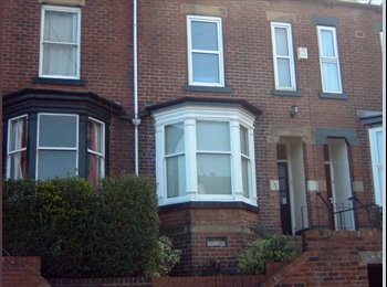 EasyRoommate UK - 4 Excellent Double Rooms Available 1st. July, Sharrow - £395 pcm